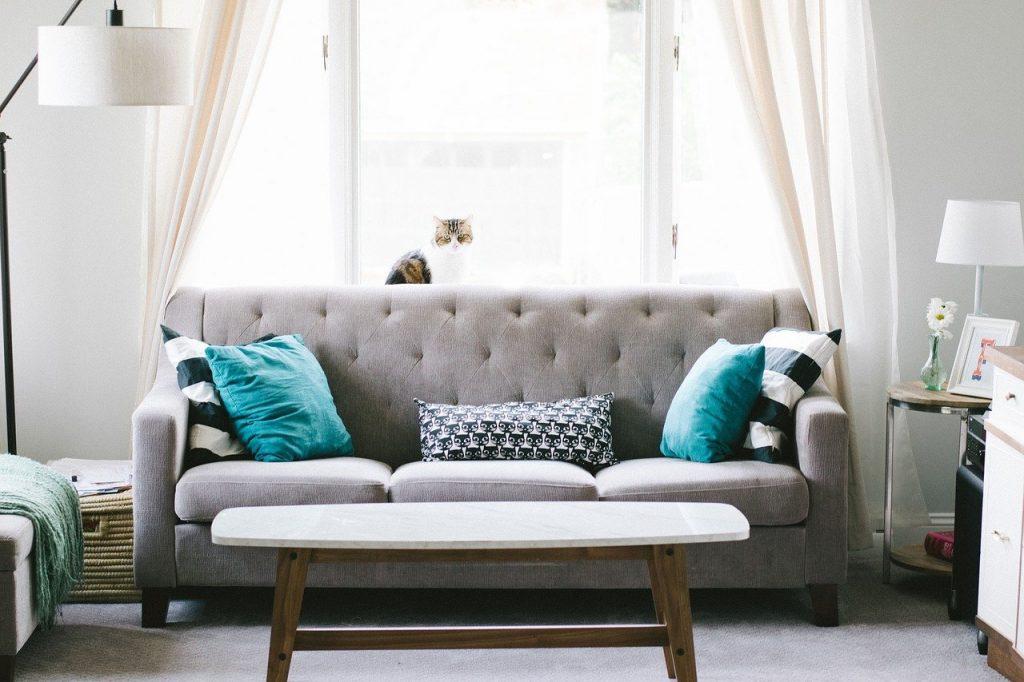eligir su sofa